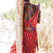 Masai traditional costume — Stock Photo #14718591
