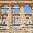 Paestum temple - Italy — Stock Photo #15627433