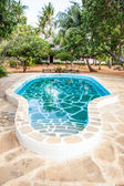 Swimming pool in African Garden — Stock Photo