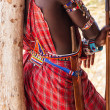 Masai traditional costume — Stock Photo #17361891