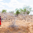 Stock Photo: Masai in savanna