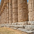 Paestum temple - Italy — Stock Photo #19003539
