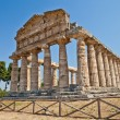 Paestum temple - Italy — Photo #19678777