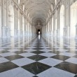 Italy - Royal Palace: Galleria di Diana, Venaria — Stock Photo #20049289
