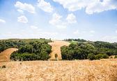 Země, v toskánsku — Stock fotografie