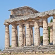 Paestum temple - Italy — Photo #23144334