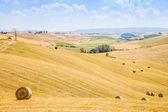 Pays en toscane — Photo