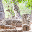 Gede Ruins — Stock Photo #25180147