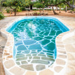 Swimming pool in African Garden — Stock Photo #26170529
