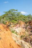 Canyon de Marafa - Kenya — Photo