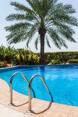 Detalhe da piscina — Foto Stock