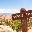 Stock Photo: Horse Trail