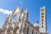Duomo di siena — Stockfoto