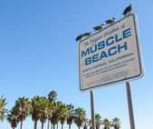 Muscle Beach — Stock Photo