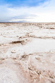 Salt Desert — Stock Photo