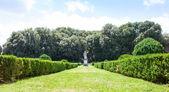 Italian garden — Stock Photo