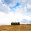 Stock Photo: Tuscany before storm