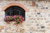 Toskanska fönster — Stockfoto