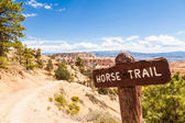 Horse Trail — Stock Photo