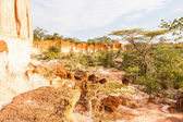 Canyon di marafa - kenya — Foto Stock