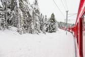 列车在雪中 — 图库照片