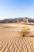 Death Valley Desert — Zdjęcie stockowe