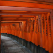 Torii at Fushimi Inari-taisha shrine, Kyoto — Stock Photo #30016571