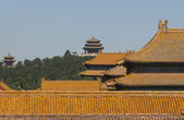 Rooftops of the Forbidden City, Beijing — Stock Photo