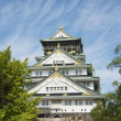Stock Photo: OsakCastle