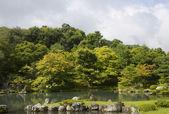 Japanese garden in early autumn, Kyoto — Stock Photo