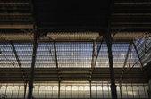 Railway station ceiling, Madrid — Stok fotoğraf