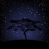 Tree over starry night — Stock Photo