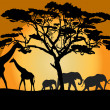 Savannah landscape with animals — Foto Stock
