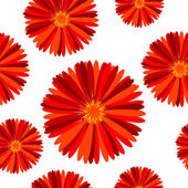 Floral seamless pattern with red flowers — Stock Photo