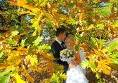 Nieuw echtpaar — Stockfoto