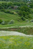 Rural landscape of Eastern Europe — Stock Photo