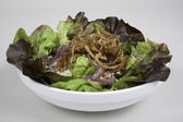 Salad of bibb lettuce and onions — Stock Photo