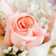 Gold wedding rings on flower - Stockfoto