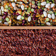 Set of beans, rice, lentils, spices for cooking in the kitchen — Stock Photo #15399013