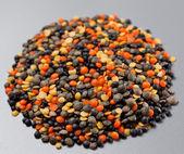 Set of different varieties of lentils — Stock Photo