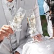 Wedding champagne in hands of bride and groom — Stock fotografie