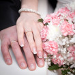 ストック写真: Hands of the groom and the bride