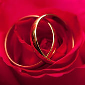 Gold wedding rings of the groom and the bride on a bunch of flow — Stock Photo