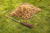 Fall clearing - brush and a pile of leaves — Stock Photo