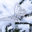 Sparkling batterfly in winter forest — Stock Photo