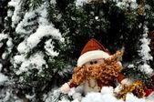 рождество карлик в снегу — Стоковое фото