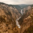 Grand canyon in Yellowstone — Stock Photo