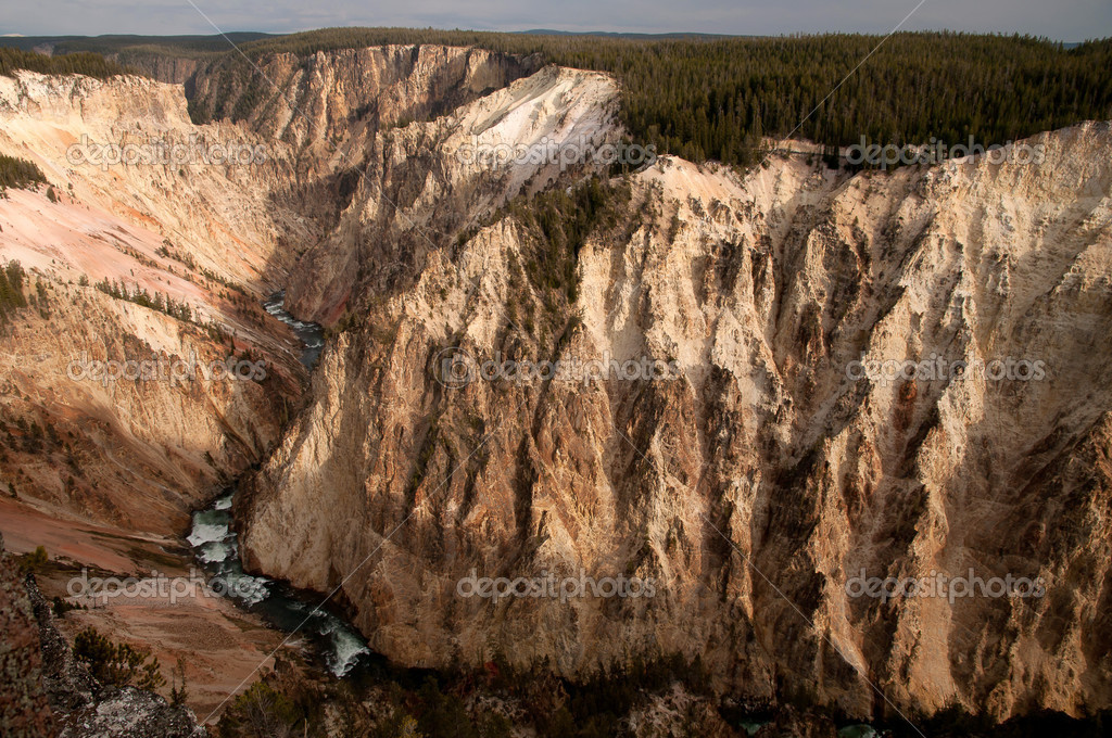 Grand canyon in Yellowstone — Stock Photo #17450571