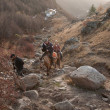 Horse ride in the mountains - Lizenzfreies Foto