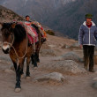 Chinese farmers in the mountains — Stock Photo